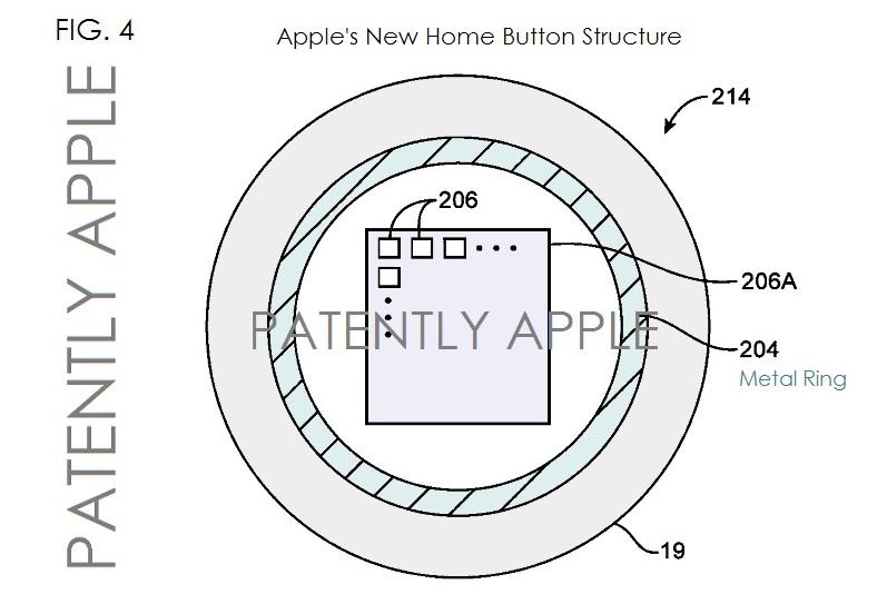 指紋認証技術 特許